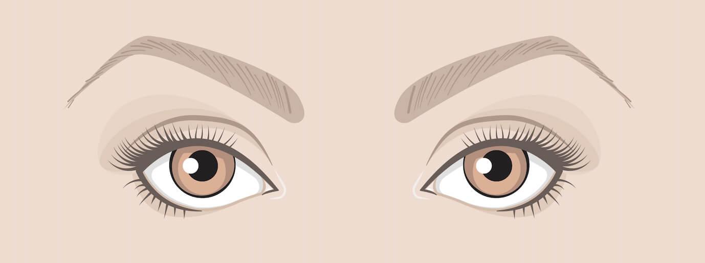 Maquiller tes yeux en fonction de leur forme :  yeux ronds